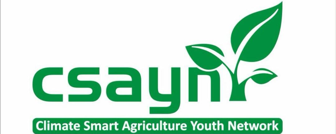 CSA Youth Network